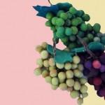 keçe üzüm